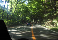 木漏れ日の車載カメラ
