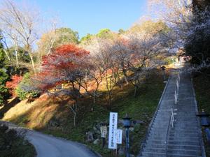 瑠璃光山薬師寺