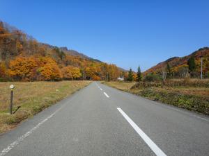 木賊から国道へ向かう道すがら