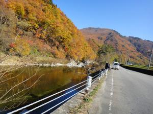 国道352 舘岩川沿いの風景