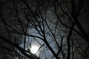 月の欠け始め