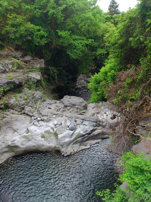 綺麗な渓流