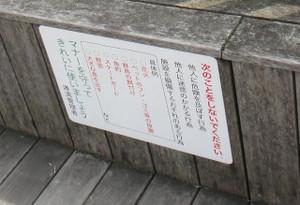 尾道港のデッキ