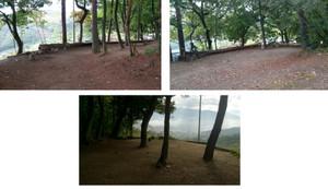 キャンプサイト:通路左側の林間サイト