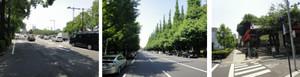 皇居→赤坂→神宮を経て