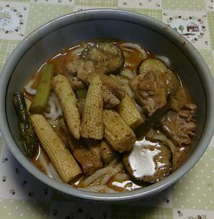 鶏肉と夏野菜のイエローカレーウドン